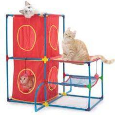 Cat Play Center
