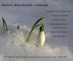 Dnes si pripomíname Svetový deň chorých - vyhlásil ho pápež Ján Pavol II. v roku 1992
