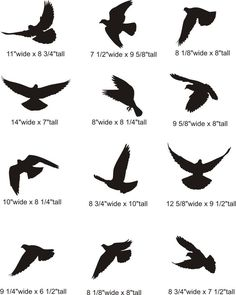 silhouette of two birds flying - Google Search