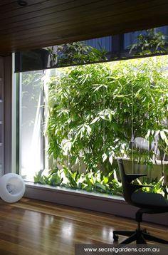 Planting ideas for an entry atrium Garden Paths, Garden Landscaping, Landscaping Tips, Landscape Design, Garden Design, Bamboo Landscape, The Secret Garden, Secret Gardens, Vegetable Garden Planner