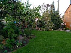 Centrální prostor zahrady zaujímá hezky hustý a sytě zelený trávník, po stranách a částečně i do něj pronikají ostrůvky okrasných rostlin sesazených do atraktivně vyhlížejících skupin.