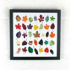 Paper Leaf Print