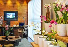 orquidário dentro de casa
