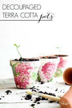 Decoupaged Terra Cotta Pots. Mother's Day kid gifts? With alyssum or nasturtium?