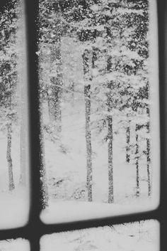 #window #winter #snow
