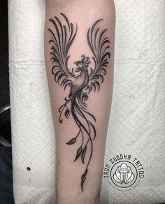 pontaneous phoenix tattoo by Ben after a hal.- pontaneous phoenix tattoo by Ben after a half day no show ! 24 … – Tattoo, Tattoo ideas, Tattoo shops, Tattoo actor, Tattoo art pontaneous phoenix tattoo by Ben after a half day no show ! H Tattoo, Tattoo Calf, Tattoo Tribal, Tattoo Shop, Body Art Tattoos, Small Tattoos, Sleeve Tattoos, Wing Tattoos, Chest Tattoo
