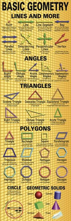 This giant, colorful poster displays and defines important basic geometry concepts, including types of lines, angles, triangles, polygons, and geometric solids. The teacher's guide contains creative extension activities along with interesting background information.