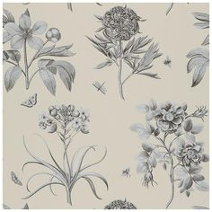 Sanderson Wallpaper Parchment Flowers Etchings and Roses Collection DPFWER106