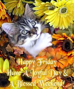 Joyful Day And Blessed Weekend day weekend friday weekend quotes morning nights days Friday Morning Quotes, Good Morning Thursday, Its Friday Quotes, Good Morning Good Night, Good Morning Wishes, Day For Night, Good Morning Quotes, Happy Saturday, Sunday
