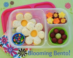 Back to school lunchbox ideas | packed in @EasyLunchboxes containers