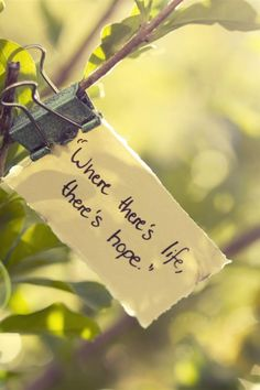 There's life, there's #hope    GO #green !  be #eco    For every green act we plant a tree: join us, #savetheplanet www.motleygreen.com