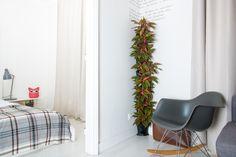 Der Minigarden bringt Deine Wohnung zum Blühen! #CouchImGrünen