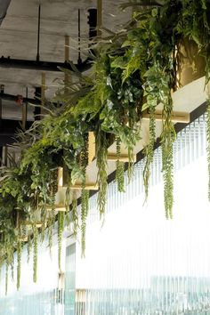 34 Nice Outdoor Hanging Plants Design Ideas - Every home becomes cozier with some hanging or potted indoor plants. For the garden or along the front walkway, outdoor artificial plants will do. Hanging Plants Outdoor, Hanging Succulents, Small Succulents, Indoor Plants, Succulent Arrangements, Succulent Plants, Porch Plants, Succulent Ideas, Wall Garden Indoor