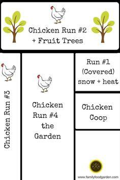 Permaculture Rotational Chicken Runs around your Garden