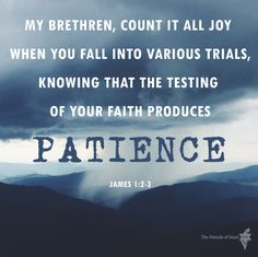 James 1:2-3  #Bibleverse #Scripture #Bible #trials Scripture Quotes, Bible Scriptures, Proverbs 8, James 1, Speak The Truth, Christian Quotes, Trials, Patience, Christianity