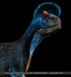 """Paleoillustration: Damir G. Martin:  """"This is my depiction of how could Carnotuaurus look like if it had feather filament. …"""""""