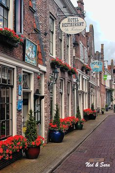 street in Edam, the Netherlands. A typical street in Holland. Kingdom Of The Netherlands, Holland Netherlands, Great Places, Places To See, Beautiful Places, Places Around The World, Around The Worlds, Excursion, Rembrandt