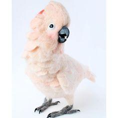 Cute Needle felted wool animal parrot (Via @yvonnesworkshopfelts)