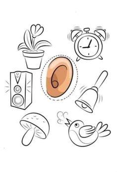 Five Senses Preschool, Preschool Activities, Cute Powerpoint Templates, Alphabet Worksheets, Trees To Plant, Diy And Crafts, Kindergarten, Homeschool, Place Card Holders