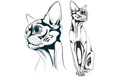 Cat vector. Objects. $5.00