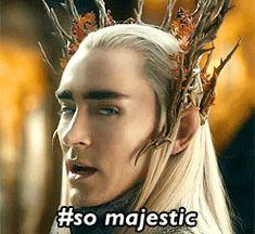 mine the hobbit Thranduil Thorin hobbitedit Desolation of Smaug my hobbit  this is probably the last ...