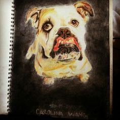 Draw, dog.