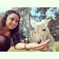 Por qué vivir en Australia