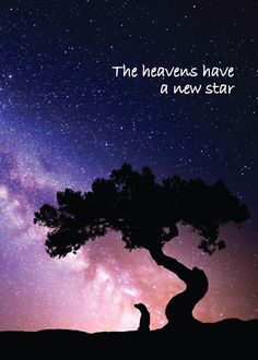 The Heavens Have a New Star -- Condolence/Bereavement Greeting Card
