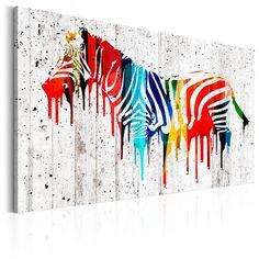 Quadro Zebra - Colourful Zebra