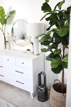 Where to buy the Best Faux Plants, artificial plants. Tips on how to decorate with faux plants; faux fiddle leaf fig tree that look real, monstera, palm..
