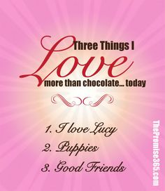 Day 220: three things i love more than chocolate (today!) :: i love lucy, puppies, good friends. This little series in gratitude continues with a nod to Beantown and other things I am grateful for in my life. It's a daily practice of gratitude in my lovemore-fearless mantra.