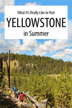 What it's like to visit Yellowstone National Park in summer in summer and tips for those traveling to Yellowstone in July and August #yellowstone
