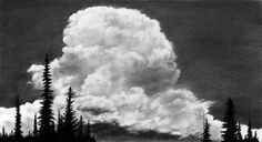 Cloud Study: Subalpine firs grant scale to a billowing thunderhead.