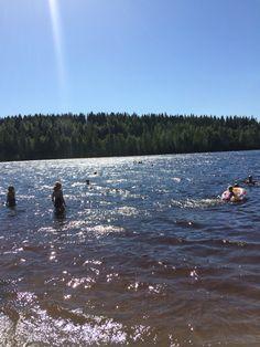 Köhniön ranta, Jyväskylä