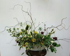 Christmas arrangement with twisted willow and silver birch twigs providing the structure for holly and the final flowers from the farm before the frosts set in.