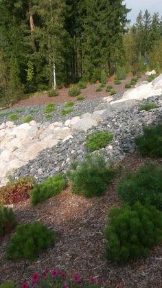 Stepping Stones, Garden Design, Villa, Home And Garden, Backyard, Outdoor Decor, House, Garden Ideas, Temple