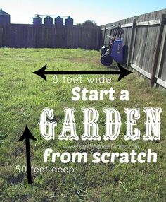 start a garden from scratch i have an area 8x50 to work with preparednessmama - How To Start A Vegetable Garden From Scratch