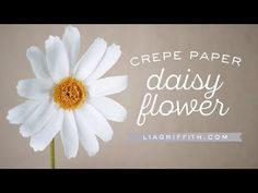 Brighten your day with this simple paper flower. Watch our video tutorial and create your own crepe paper daisy to share the sunshine. Crepe Paper Flowers Tutorial, Tissue Paper Flowers, Plastic Flowers, Fake Flowers, Diy Flowers, Simple Paper Flower, Large Paper Flowers, Paper Daisy, Flower Video