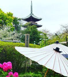Pass Tokyo Tourism, Destinations, Gazebo, Outdoor Structures, Patio, Outdoor Decor, Travel, Tips And Tricks, Kiosk