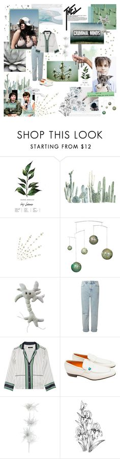 """""""in this town, it all went down//our chromosomes in sepia tones//in my mind, in my mind    BotR"""" by e-ureka ❤ liked on Polyvore featuring KEEP ME, GET LOST, Miss Selfridge, Equipment, Salvatore Ferragamo, Pier 1 Imports, kitchen and BotRS2round04"""