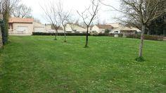 Terrain d'herbe des Futés