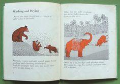Marie Neurath, ISOTYPE 1964: Keeping Clean  http://www.ebay.ca/itm/Marie-NEURATH-ISOTYPE-1964-Keeping-Clean-rare-book-/360412509939?pt=LH_DefaultDomain_0