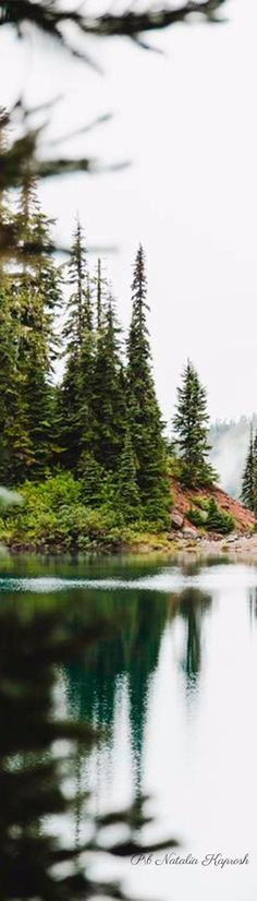 Coniferous Trees, Cabins In The Woods, Teddy Bears, Once Upon A Time, My Dream, Picnic, Touch, River, Mountains