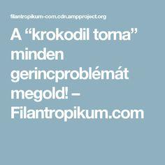 "A ""krokodil torna"" minden gerincproblémát megold! – Filantropikum.com"