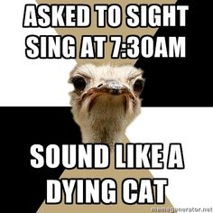 Oh don't we all LOVE sight singing. Choir Humor, Choir Memes, Music Jokes, Music Humor, Sight Singing, Music Theater, Theatre, Like A Cat, Music Theory