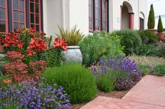 Small mediterranean garden design pictures small mediterranean pictures of front yard tuscan landscaping ideas landscape design workwithnaturefo