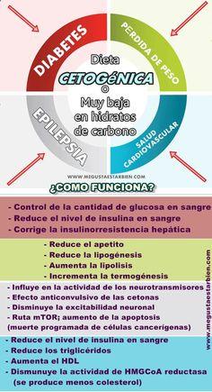 ¿Para qué sirve una dieta cetogénica o baja en hidratos de carbono