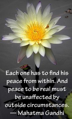 "☆★☆ ""Each one has to find his peace from within. And peace to be real must be unaffected by outside circumstances."" ~ Mahatma Gandhi More"