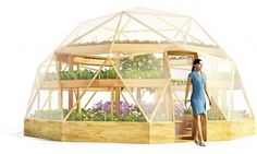 geodesic dome greenhouse inside - Recherche Google