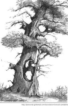 11 dibujos a lapiz de árboles (4) Sketchbook Drawings, Pencil Drawings, Tree Sketches, Traditional Ink, Wood Burning Art, Cute Animal Drawings, Realistic Drawings, Charcoal Drawing, Wood Patterns
